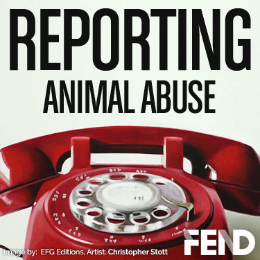 FEND - How to Report Animal Abuse.